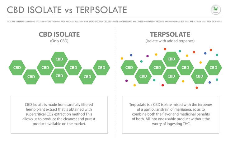 cbd isolate vs terpsolate
